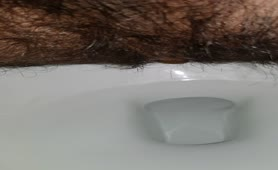 Hairy guy dropped a long turd in toilet
